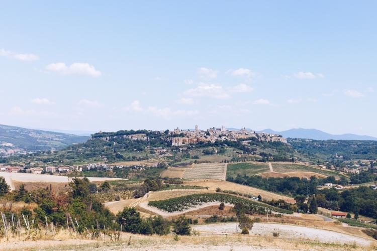 Tuscan Drive 2017-2259
